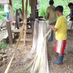 abacastripper