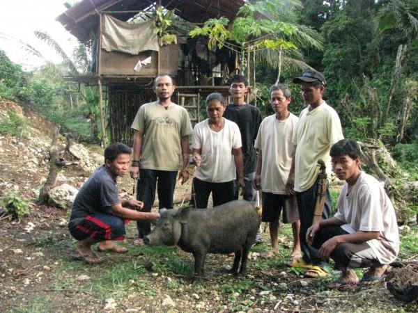 boeren met varken